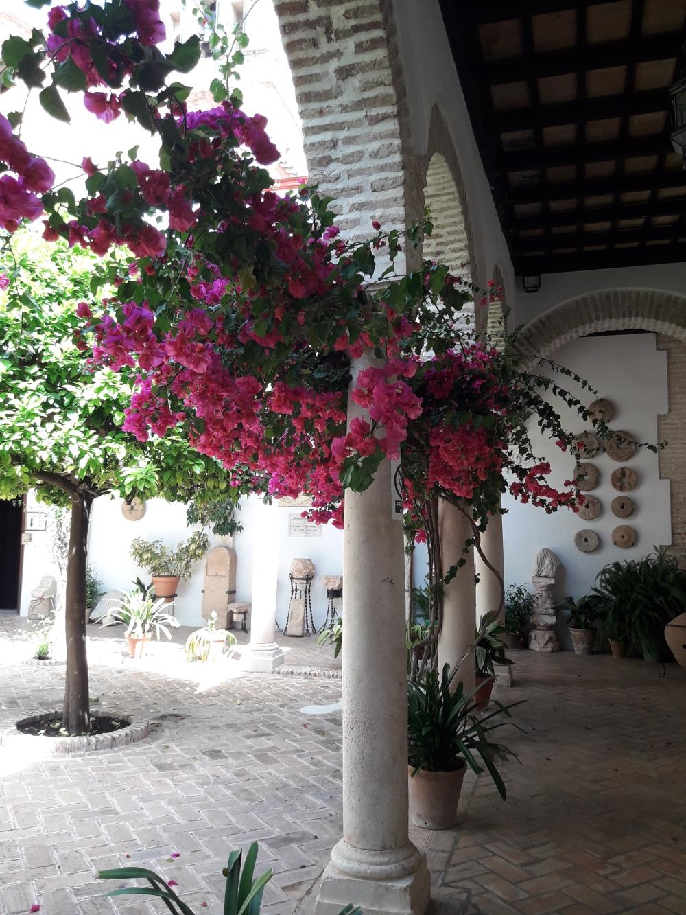 Patio iglesia Santa María